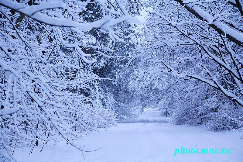 Фото закат зимний
